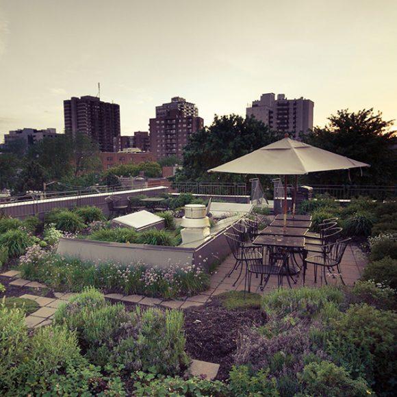 Mon voisin l'architecte 03 – Visites été-automne